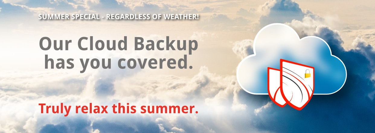 Our Cloud Backup has you covered.
